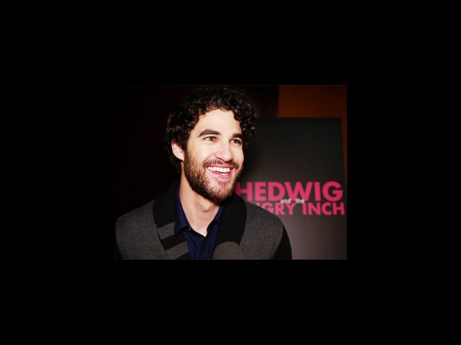 VS - Hedwig - Darren Criss - wide - 4/15