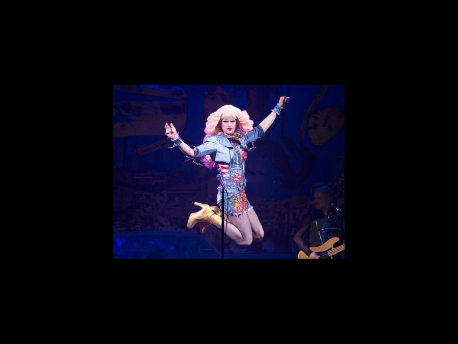 PS - Hedwig and the Angry Inch - Neil Patrick Harris - wide - 4/14